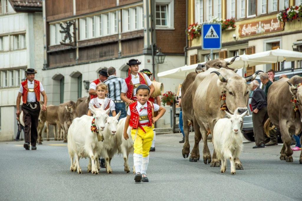 travel to switzerland
